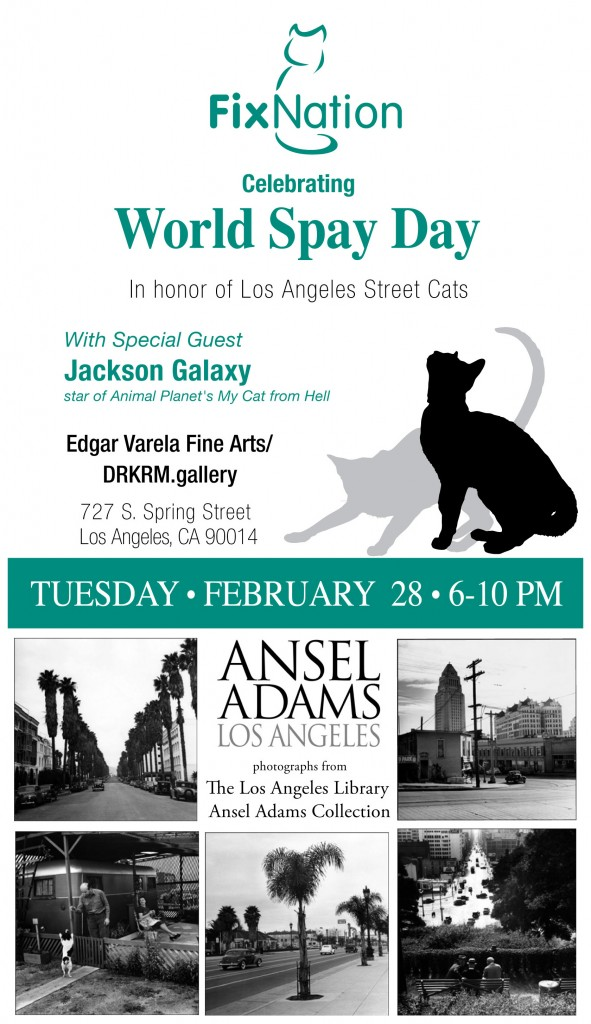 It's World Spay/Neuter Your Pet Day!