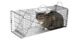 JUNE 24TH – TNR FERAL CAT WORKSHOP