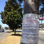 Bureau of Street Service Tree Removal Notice on Crenshaw