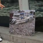 Marine waste