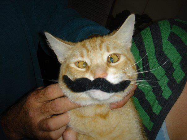 Movember participant fighting for a cause