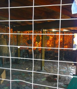 Interior view of a Bottle House (Photo by Nikki Kreuzer)