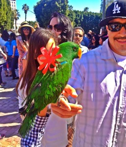 A Man and His Parrot (Photo by Nikki Kreuzer)