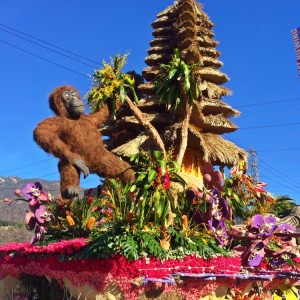 The Indonesia Tourism float (photo by Nikki Kreuzer)