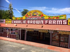 Charlie Brown Farms in Littlerock, CA (photo by Nikki Kreuzer)