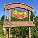 Copeland's sign (photo by Nikki Kreuzer)