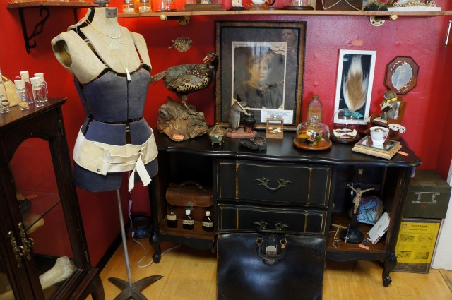 Antiques Row: Bearded Lady Vintage