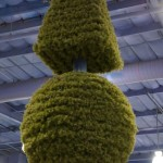 Frys Topiary