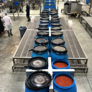 30-gallon vats of ground chili paste stretch as far as the eye can see. These will soon be mixed with other ingrediats to make Sriracha (photo by Nikki Kreuzer)