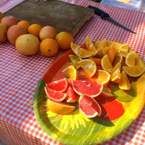 Fresh picked oranges from La Verne's Heritage Park (photo by Nikki Kreuzer)