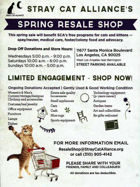 stray cat alliance flyer