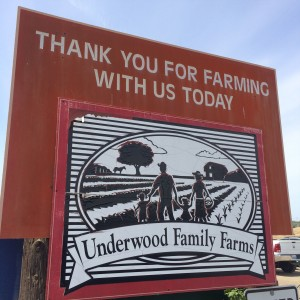 Underwood Family Farms (photo by Nikki kreuzer)