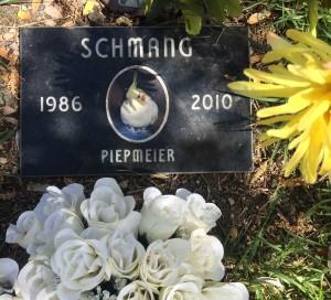 Schang 1986-2010 (photo by Nikki Kreuzer)