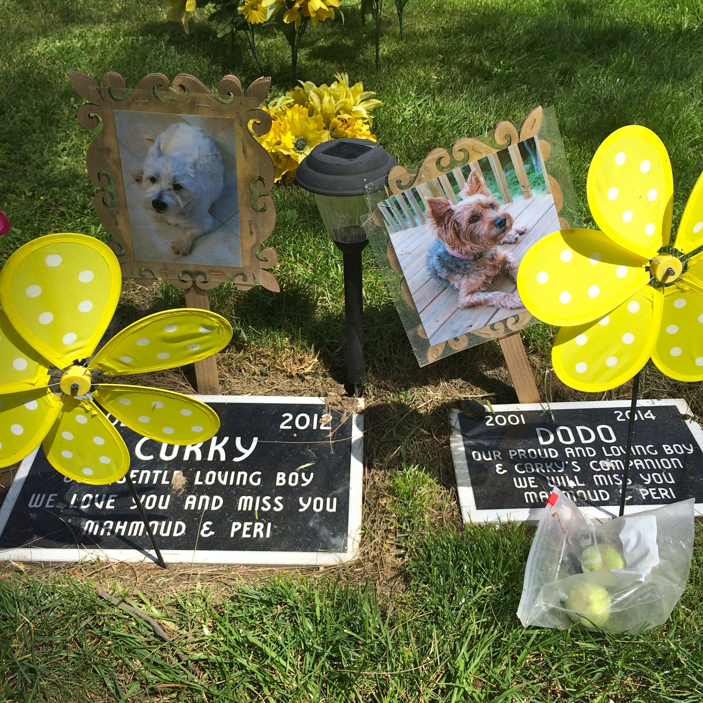 The L.A. Pet Cemetery: over-the-top demonstrations of love (photo by Nikki Kreuzer)