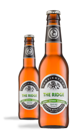 Rhythm and Brews – The Ridge and New Gold Dream