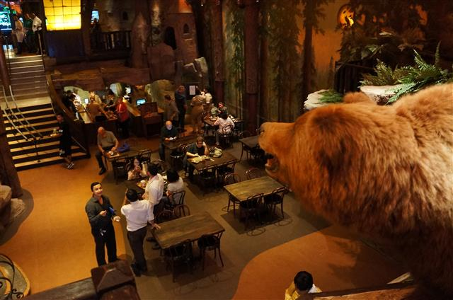 Bear's eye view at Clifton's Cafeteria