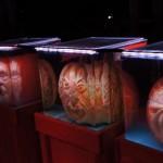 Rise of the jack o' lanterns heads