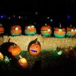Rise of the jack o' lanterns minions