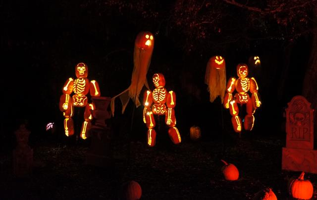 Rise of the Jack O' Lanterns at Descanso Gardens