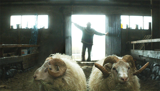 """Movie Review: """"Rams"""" Screening at AFI FEST Presented By Audi"""