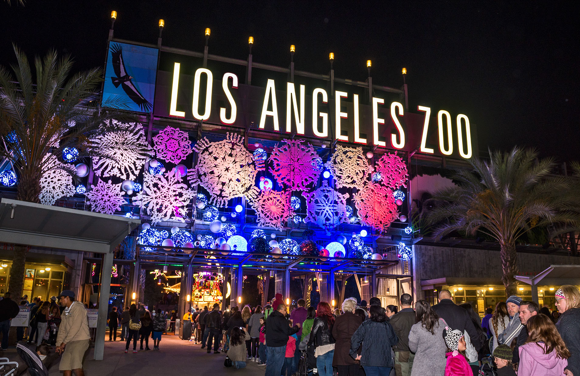 LA Zoo Lights at Night: A Walking Tour of Oohs and Aahs
