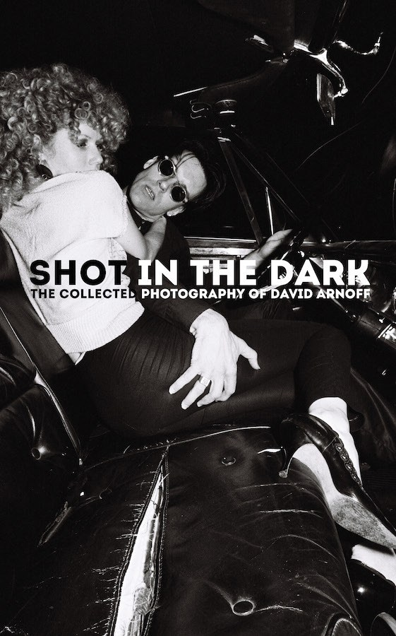 Shot in the Dark Cover