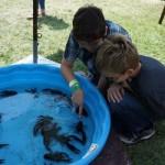 Live crawfish at Simi Valley Cajun & Blues