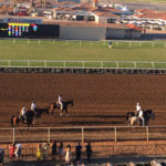 Del Mar Racetrack 7  (Photo by Rachel Ganz)