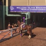 Breeders Cup World Championship 2016 5