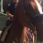 Breeders Cup World Championship 2016 4