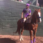 Breeders Cup World Championship 2016 12