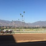 Breeders Cup World Championship 2016 8