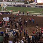 "winning horse ""Arrogate"" At Breeders Cup 2016"
