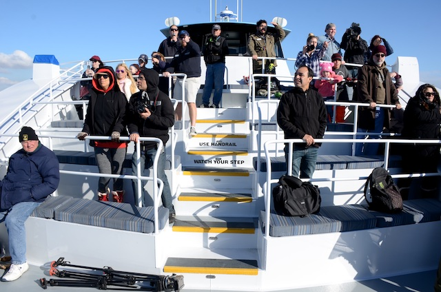 Aquarium of the Pacific and Harbor Breeze Cruises: The Grey Whales Return to California!