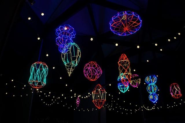 The LA Zoo Celebrates The Holiday Season With Zoo Lights